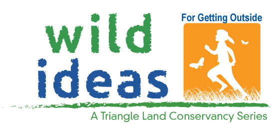 Wild-Ideas-for-Go-Logo web