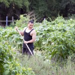 Transplanting Traditions farmer