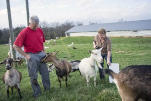 Lindale Farm in Chatham County's Silk Hope community
