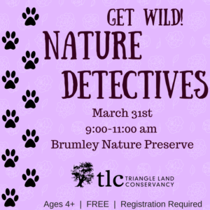 Get Wild! Nature Detectives @ Brumley Nature Preserve  - South Parking Lot | Chapel Hill | North Carolina | United States