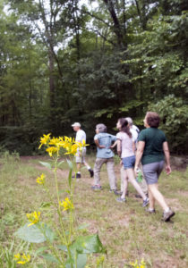 March Nature Walk @ Johnston Mill Nature Preserve | Chapel Hill | North Carolina | United States