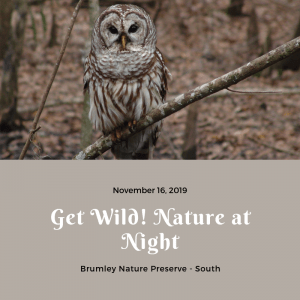 *Rescheduled* Get Wild! Nature at Night @ Brumley Nature Preserve - South | Chapel Hill | North Carolina | United States