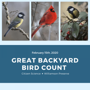 Great Backyard Bird Count @ Bailey and Sarah Williamson Preserve | Durham | North Carolina | United States