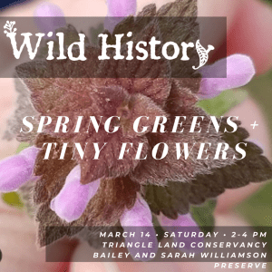 CANCELED: Wild History Walk & Tasting: Spring Greens & Tiny Flowers @ Bailey and Sarah Williamson Preserve