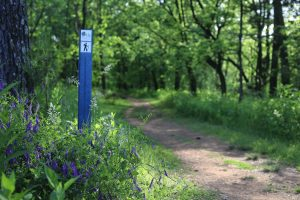 Conservation Conversations: National Trails Day