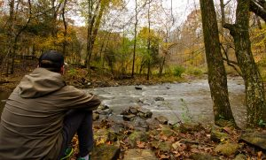 Plein Air Art Class with Nerys Levy @ Johnston Mill Nature Preserve